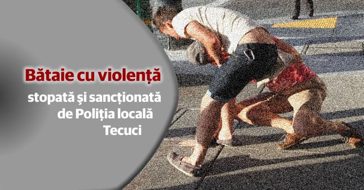 Cinci bătăuşi din Tecuci sanctionaţi de Poliţia locală