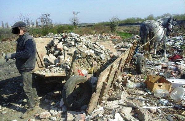Polițiștii locali au depistat Caruta cu gunoi Tecuci
